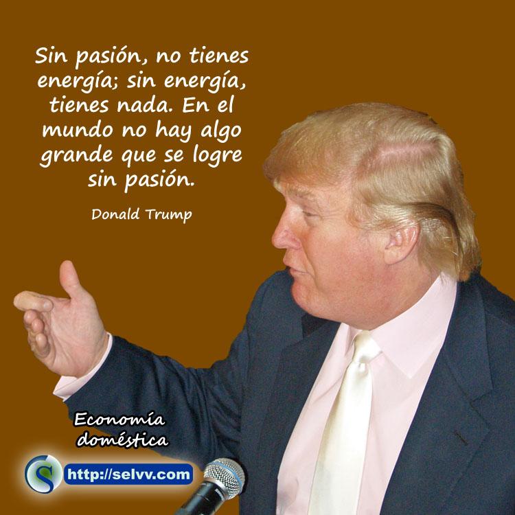 Donald Trump - Economía doméstica - Selvv