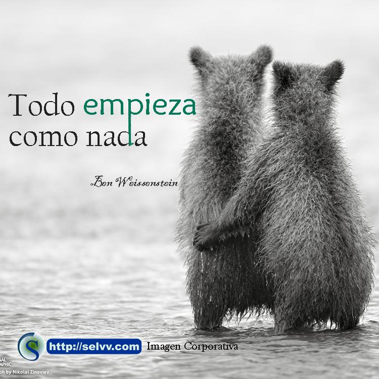 Comienzo - Imagen corporativa - Selvv